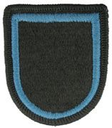 173rd Special Troops Battalion Airborne Team Army Flash