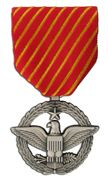 Air Force Combat Action Large Medal