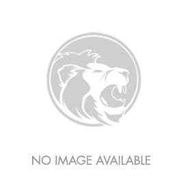 Air Force Distinguished Public Service Large Medal
