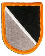 1st Special Warfare Training Group Army Flash