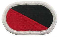 311th Millitary Intellegence Long Range Survellance Division Army Oval