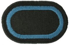 173rd Special Troops Battalion Airborne Team Army Oval