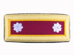 ARMY SHOULDER STRAP  LIEUTENANT COLONEL ORDNANCE   NYLON  MALE