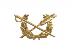 ARMY BRANCH OF SERVICE  22K  JUDGE ADVOCATE GENERAL OFFICER