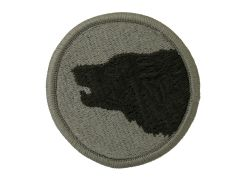 104th Infantry Division Training Army Patch ACU With Velcro